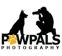 Pet Photography, Dog Photographer, PawPals Photography