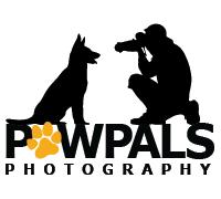 Pet Photography, Dog Photographer, PawPals Photography